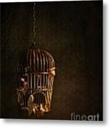 Old Wooden Bird Cage With Feathers Metal Print by Sandra Cunningham
