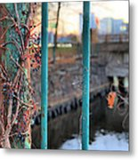 On The Fence Metal Print by JC Findley