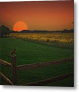On The Fence Metal Print by Tom York Images