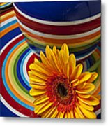 Orange Daisy With Plate And Vase Metal Print by Garry Gay