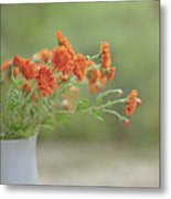 Orange Flower Metal Print by Pamela N. Martin