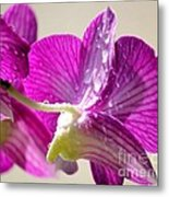 Orchids And Raindrops Metal Print by Theresa Willingham