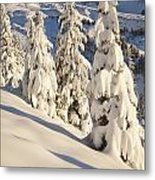 Oregon, United States Of America Snow Metal Print by Craig Tuttle