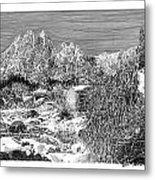 Organ Mountain Wintertime Metal Print by Jack Pumphrey