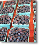 Organic Blackberries Metal Print by Wendy Connett