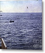 Out To Sea Metal Print by Madeline Ellis