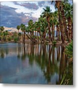 Palms Trees Over Papago Lake Metal Print by Dave Dilli