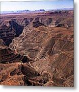 Panormaic View Of Canyonland Metal Print by Robert Bales