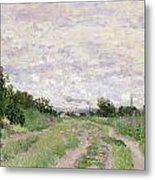 Path Through The Vines At Argenteuil Metal Print by Claude Monet