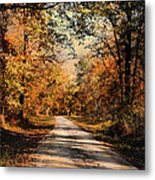 Path To Nowhere Metal Print by Jai Johnson