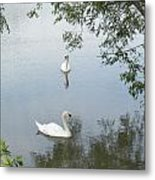Peaceful Metal Print by Corinne Elizabeth Cowherd