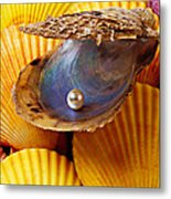 Pearl In Oyster Shell Metal Print by Garry Gay