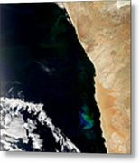 Phytoplankton Bloom Off Nambia Metal Print by Nasa