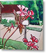Pink Geranium Sketchbook Project Down My Street Metal Print by Irina Sztukowski