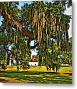 Plantation Metal Print by Steve Harrington