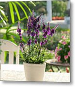 Plastic Lavender Flowers  Metal Print by Nawarat Namphon
