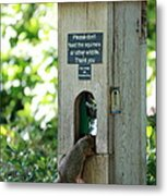 Please Don't Feed The Squirrels Metal Print by Elizabeth Hart