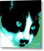 Poster Kitty Metal Print by Elinor Mavor