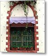 Pretty Decorated Window Metal Print by Yali Shi