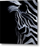 Profile Of Zebra Metal Print by Natasha Denger