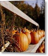 Pumpkins Aglow Metal Print by Christine Tuck
