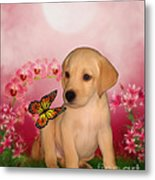Puppy Innocence Metal Print by Smilin Eyes  Treasures