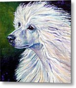 Pure Poetry - Chinese Crested Metal Print by Lyn Cook