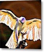 Pure Whtie Raptor Metal Print by Carrie OBrien Sibley