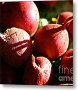 Radishes At Sunrise Metal Print by Susan Herber