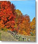 Rail Fence In Fall Metal Print by Peg Runyan