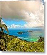 Rain In The Tropics Metal Print by Keith Allen