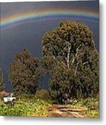 Rainbow Metal Print by Photostock-israel