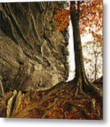 Raven Rock And Autumn Colored Beech Metal Print by Raymond Gehman