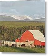 Red Barn With Horses Grazing Metal Print by Michael Interisano