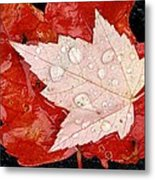 Red Maple Leaves Metal Print by Mike Grandmailson