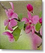 Redbud Branch Metal Print by Jeff Kolker
