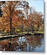 Reflection In The Water Metal Print by Denise Ellis