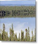 Reflection In Willow Lake Near Copper Metal Print by Rich Reid