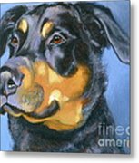 Rescue In Blue Metal Print by Susan A Becker