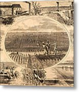Rice Plantation, 1866 Metal Print by Granger