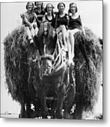 Ride On A Hay Cart Metal Print by Fox Photos