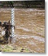 Rising River Level Metal Print by Mark Williamson