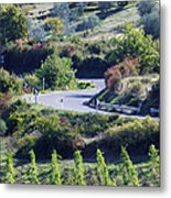 Road Winding Through Vineyard And Olive Trees Metal Print by Jeremy Woodhouse