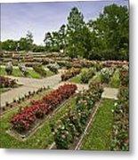 Rose Garden Park Metal Print by M K  Miller