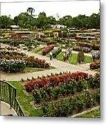 Rose Garden Park Tyler Texas Metal Print by M K  Miller