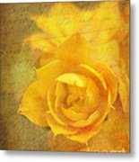 Roses For Remembrance Metal Print by Judi Bagwell
