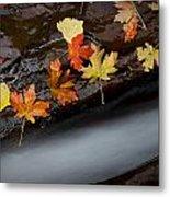 Rushing Autumn Metal Print by Jim Speth