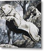 Sabre-toothed Tigers Metal Print by Richard Hook