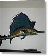 Sailfish Metal Print by Val Oconnor