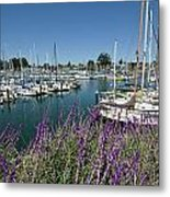 Santa Cruz Harbor - California Metal Print by Brendan Reals